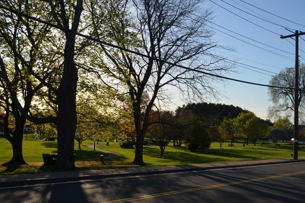 Green space in Burlington, Massachusetts